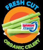 fresh-cut-organic-celery-2