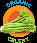 organic-celery