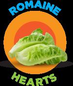 romaine-hearts